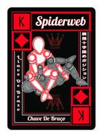 22. Spider web